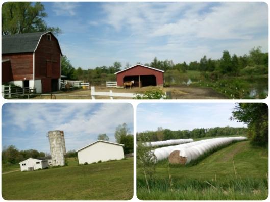 Suasana daerah pertanian di Laingsburg, Michigan.